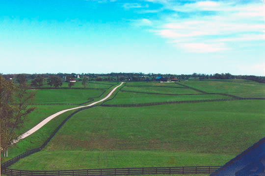 Sandringham Farms Picture